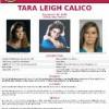 Tara Leigh Calico 5