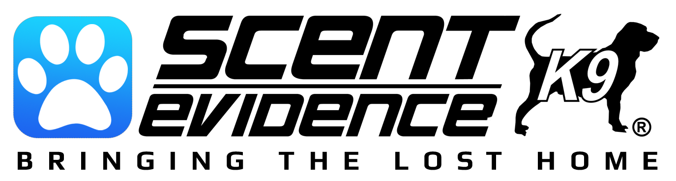 video-all-black-logo-with-tag-trademark-no-background